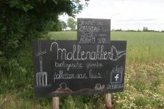 200613MaldegemKleit96