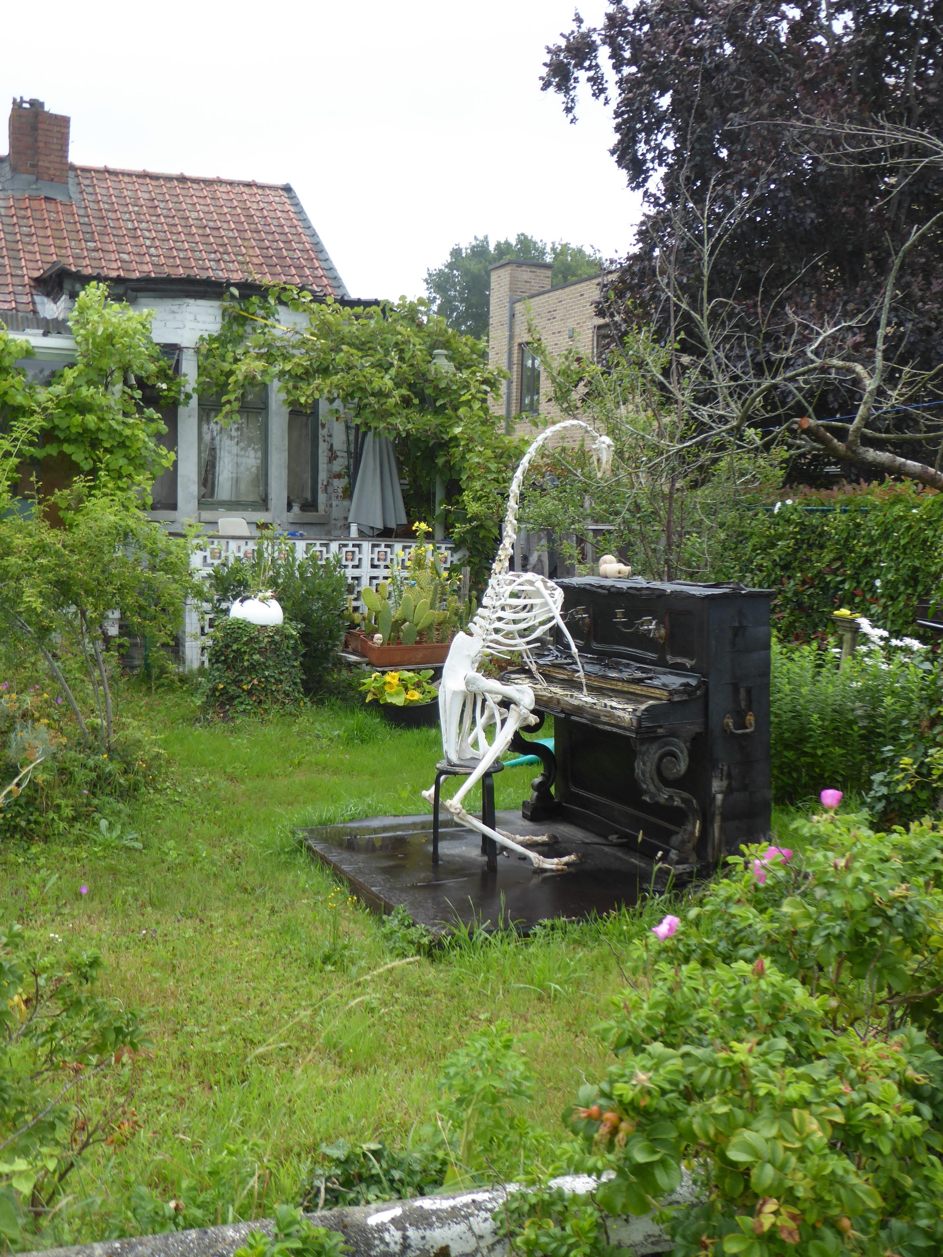 200711VerslagDrongenDestelbergen4