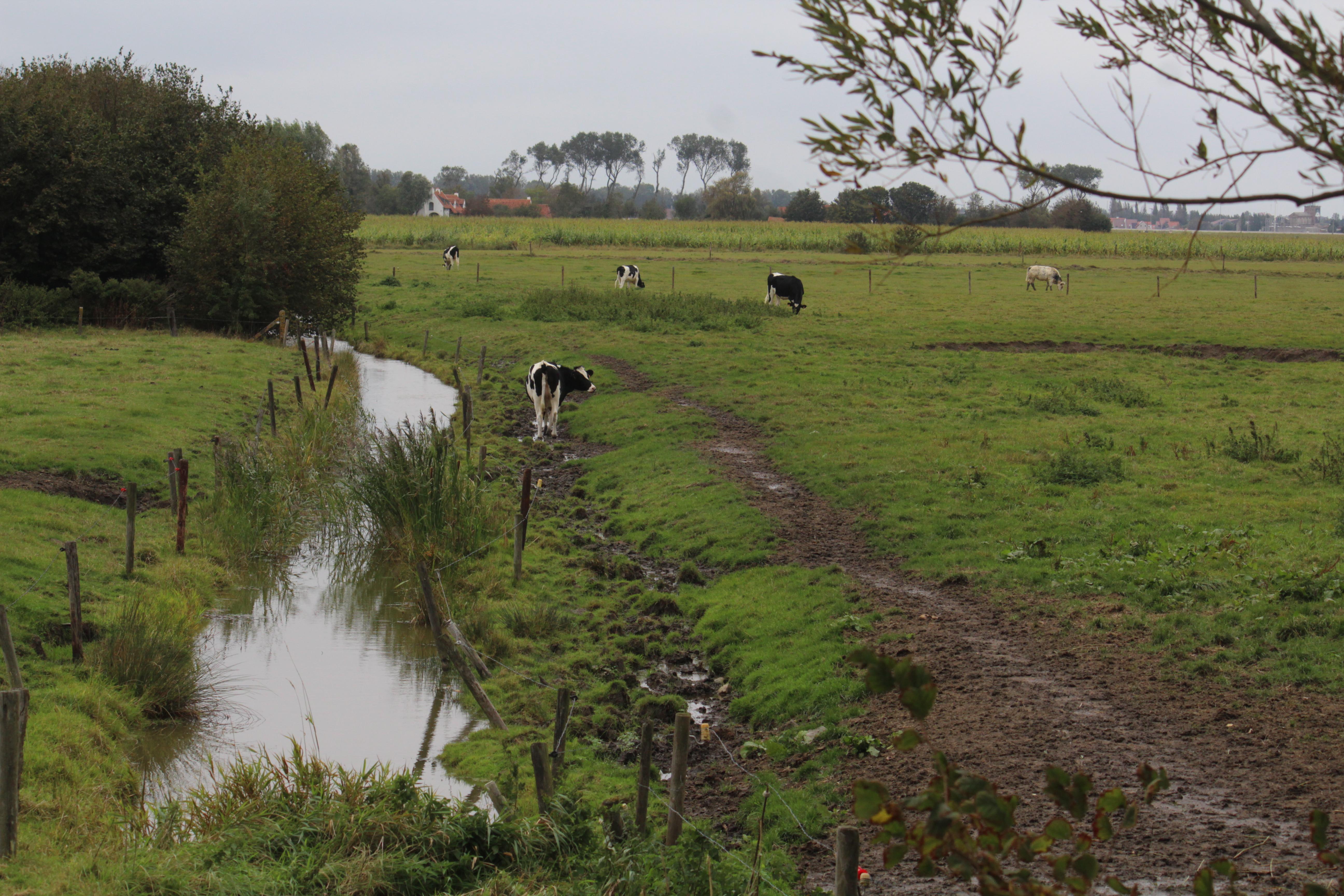 200927-Hoeke90
